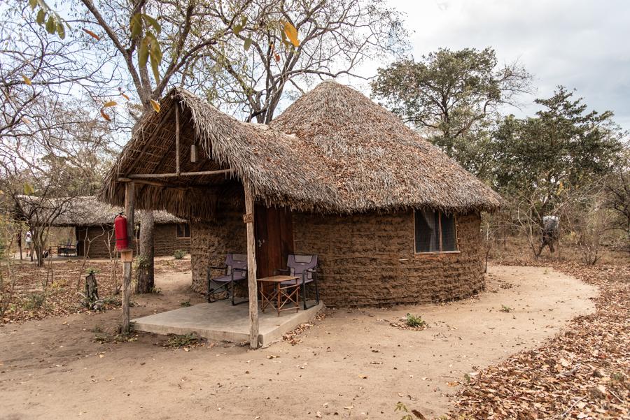 Safari-Urlaub Tansania