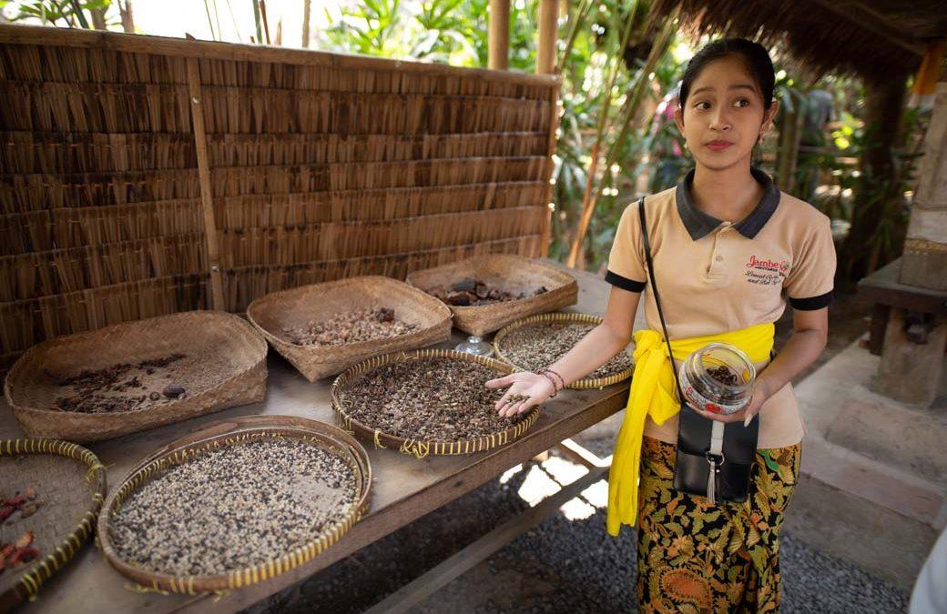 Diese nette Dame hat uns die Herstellung der vielen Tees und Kaffees auf Bali präsentiert. Natürlich inklusive Kostprobe!
