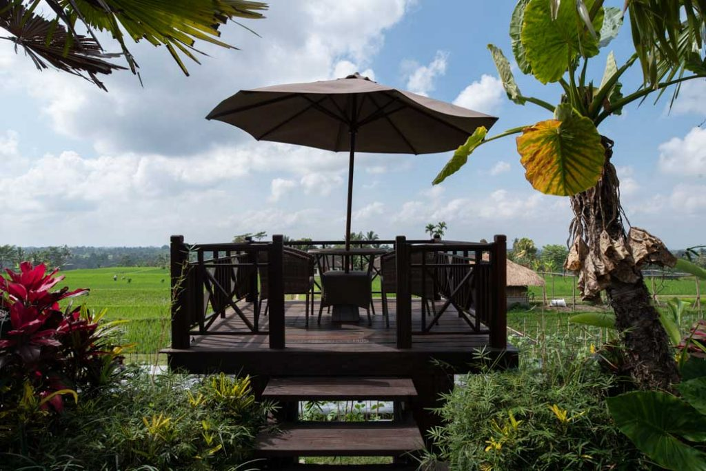 Breakfast with a view. Frühstücken inmitten der Natur, umgeben von Reisfeldern.