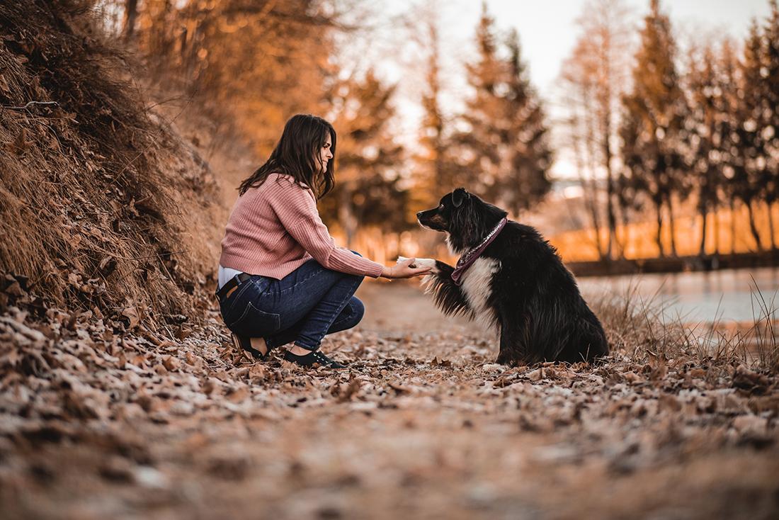 Hundefotografie Oberösterreich