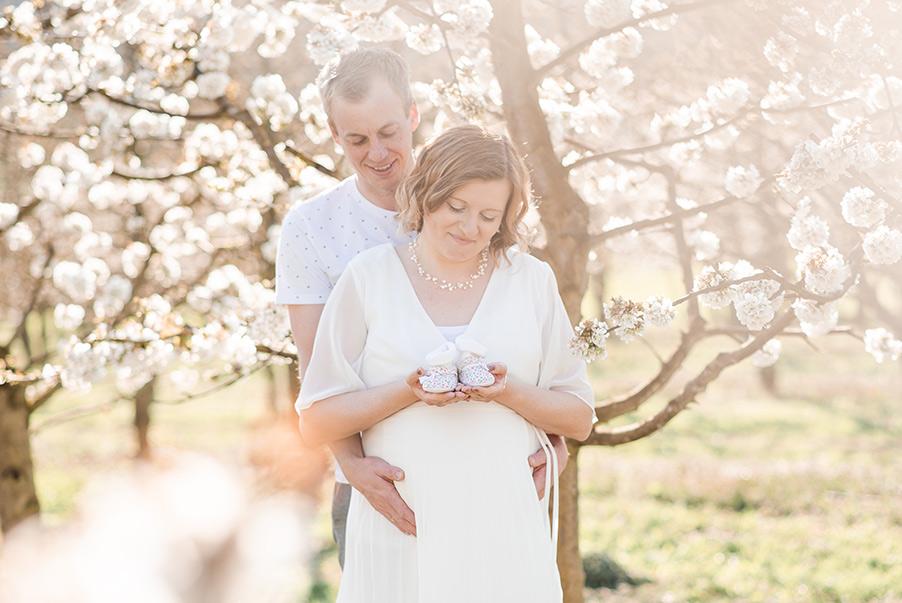 Babybauch-Fotoshooting Kirschblüten